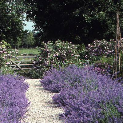 How To Use Gravel Effectively In The Garden